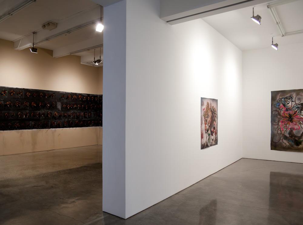 Wangechi Mutu, Installation View