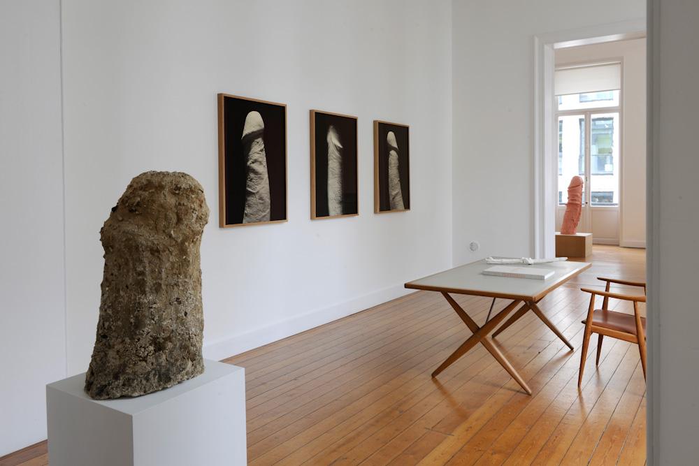 Sarah Lucas, Installation View