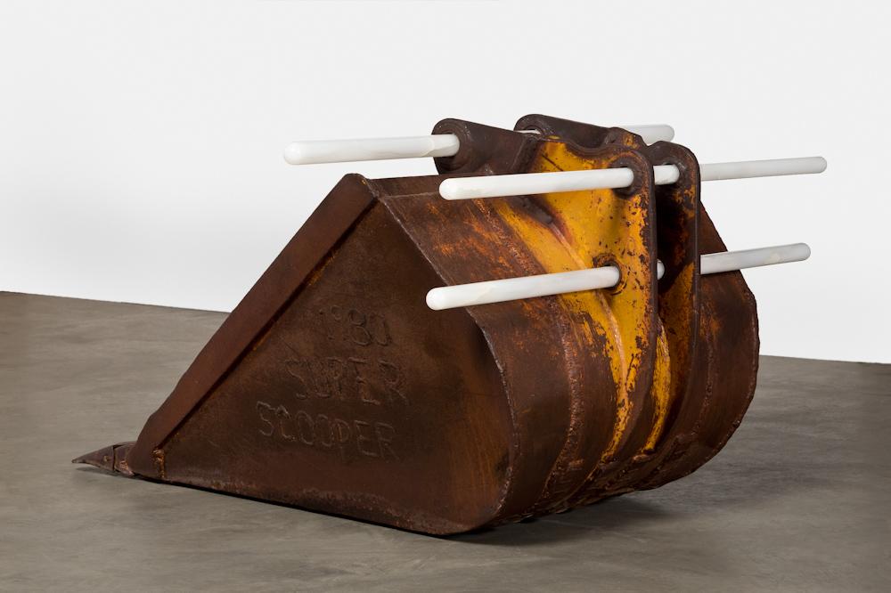Cyprien Gaillard, Ivory-billed Coot