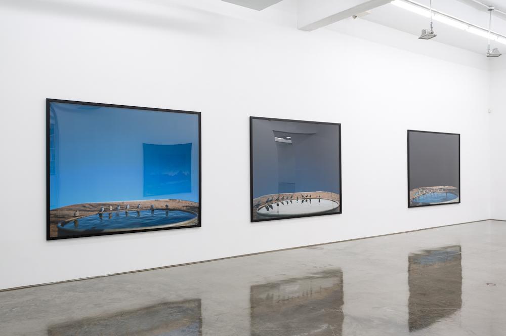Jean-Luc Mylayne, Installation view