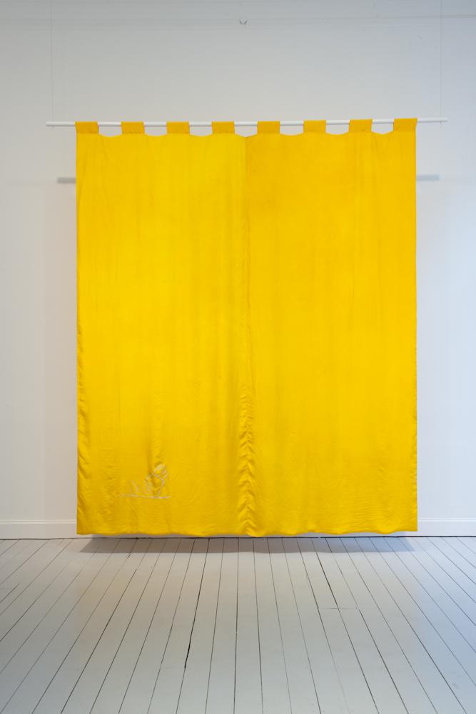 Kasper Bosmans, Iris Pseudacorus (Yellow Flag)