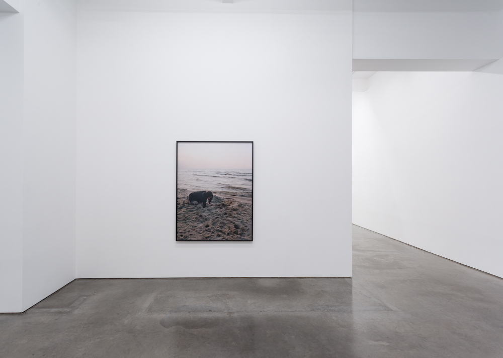Sharon Lockhart, Installation view