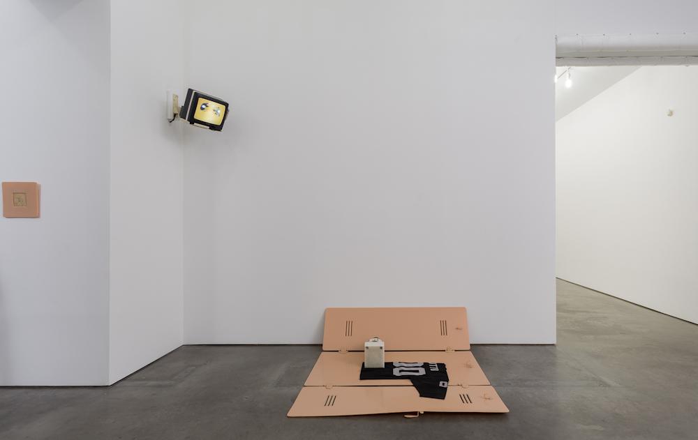 Matthew Barney, Installation view