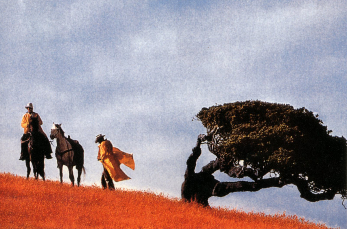 Richard Prince, Untitled (cowboys)