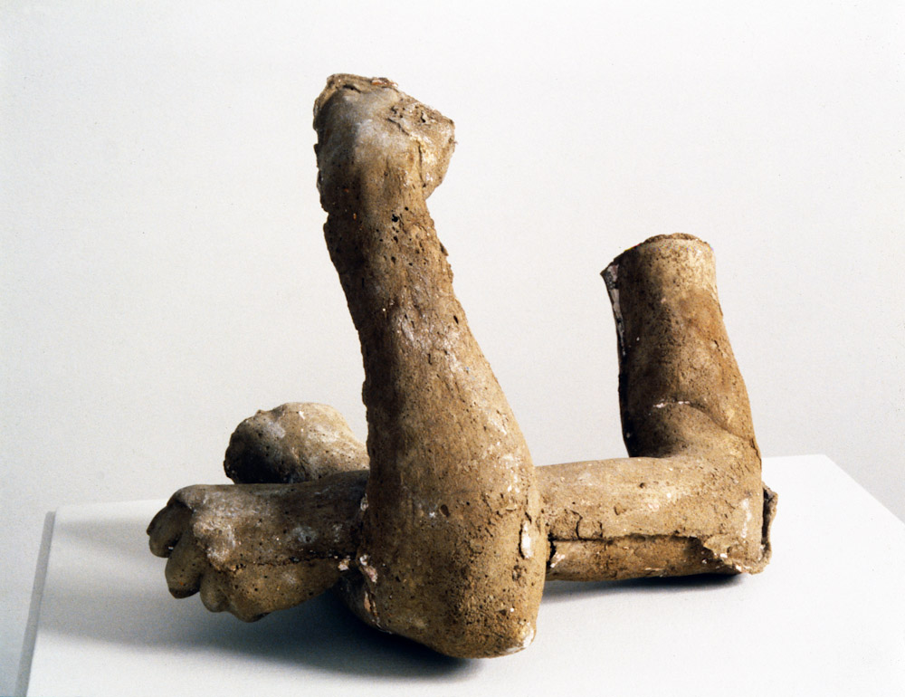 Sarah Lucas, Get Hold of This