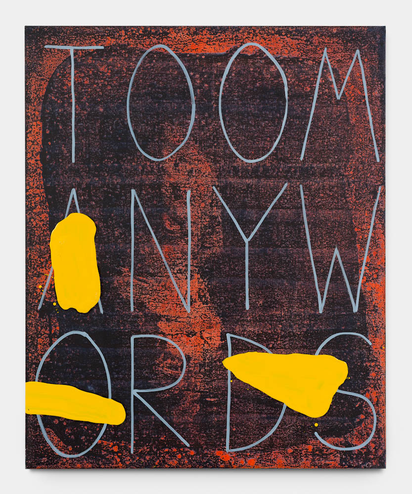Walter Swennen, Too many words